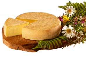Fromage d'Entrammes